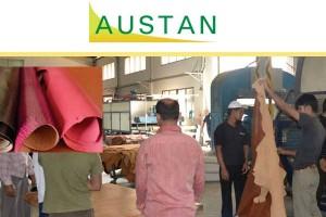 Image courtesy of : Austan Ltd.