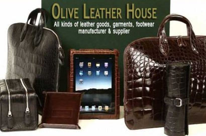 Olive Leather House