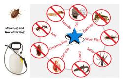 Pest Control Bangladesh – Company List