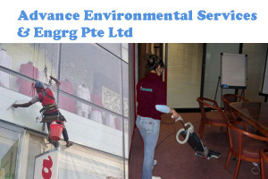 Advance environmental services & engrg pte ltd