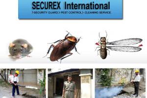 Ananta Joti Pest Control