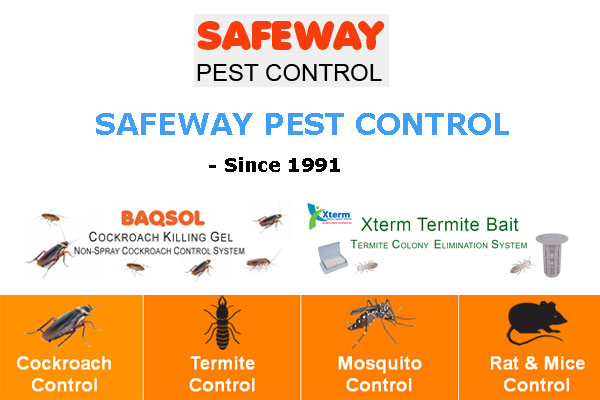 Safeway Pest Control Bangladesh – Pest Control Service Company, Importer and Supplier