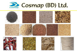 Cosmap (BD) Ltd. - Exporter of Sesame seed from Bangladesh