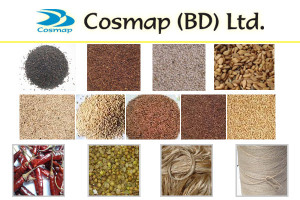 Cosmap (BD) Ltd : Exporter of Black, Brown, Yellow & white Sesame seed from Bangladesh