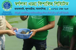 Fish Hatchery in Bangladesh