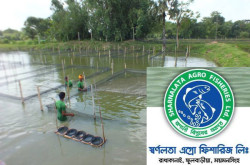 Sharnalata Agro Fisheries Ltd - Fish Hatchery
