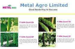 Metal Seed