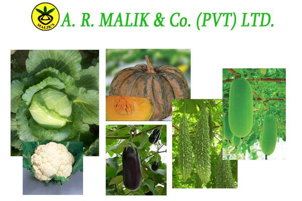 A. R. Malik & Company (Pvt.) Ltd