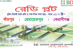 Bangladesh Development Company Ltd. - BDG