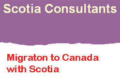 Scotia Consultants