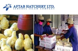 Aftab Hatchery Ltd Bangladesh
