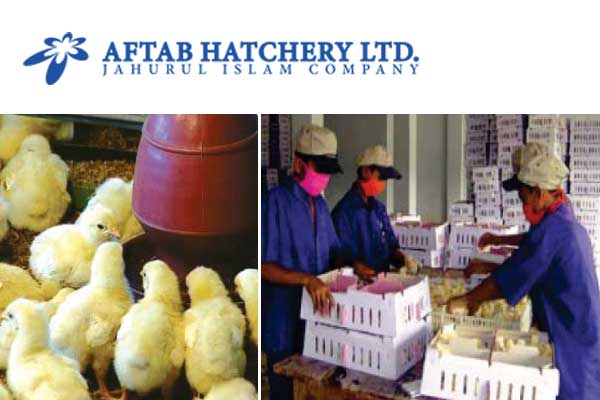 Aftab Hatchery Ltd - Poultry Hatcheries in Bangladesh