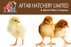 Aftab Hatchery Ltd