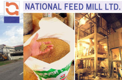 National Feed Mill Ltd, Gazipur, Bangladesh