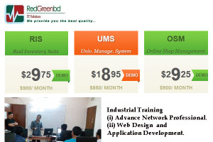 RedGreenBD IT Solutions
