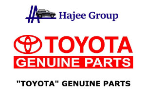 Genuine-Auto-Parts-Importer