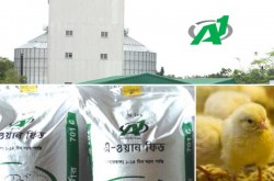 AG Agro Industries Ltd - A1 Chicks & Feeds