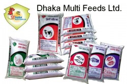 Dhaka Multi Feeds Ltd | Broiler Feed, Layer Feed, Cattle Feed & Duck Feed