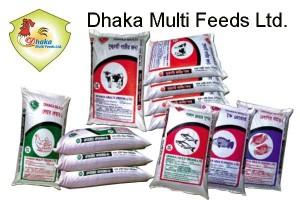 Dhaka-Multi-Feeds