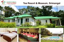 Tea-Resort-and-Museum-Srimangal