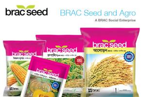 BRAC Seed Bangladesh