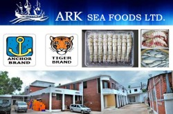 ARK Sea Foods Ltd - Black Tiger Shrimp Exporters in Bangladesh