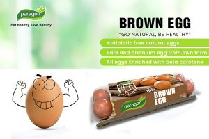 Paragon Brown Egg Online